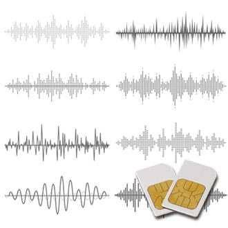 Chipkarte RIFE für Zapper Biowave mit 14 Frequenzen nach Raymond Royal Rife