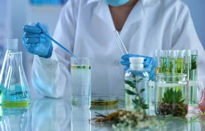 Im Labor wird aus Cannabis Öl gewonnen