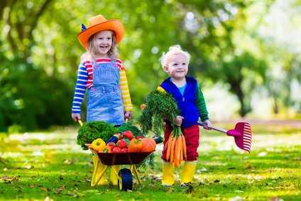 Zwei süsse Kinder im Grünen schieben eine kleine Schubkarre voller leckerem Gemüse
