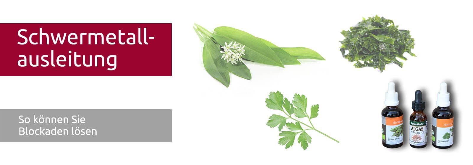 NutraMedix Algas - Algen für Schwermetallausleitung  Bärlauch, Koriander und Algen