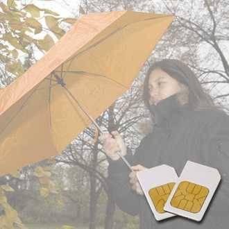 Chipkarte IMMUNSYSTEM für Zapper Biowave nach Hulda Clark