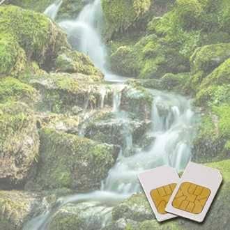 Chipkarte LYMPHDRAINAGE für Zapper Diamond Shield nach Hulda Clark