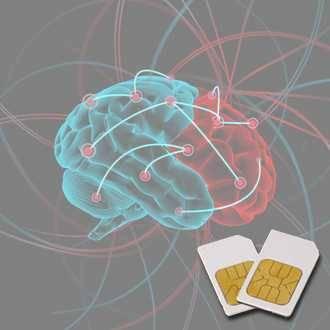 Chipkarte ME (Meningitis/Enzephalitis) für Zapper Diamond Shield nach Hulda Clark